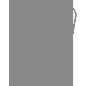 Icon-Checkliste